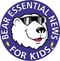 Bear Essential News